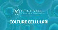 colture cellulari