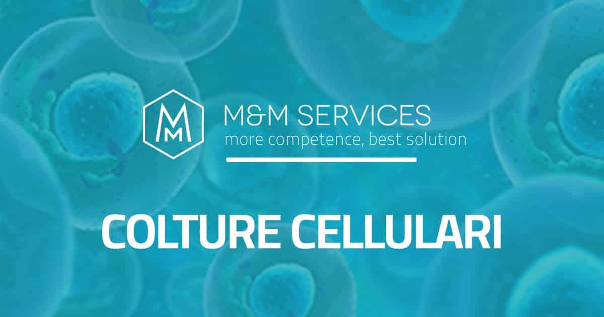 colture cellulari servizi biotecnologia