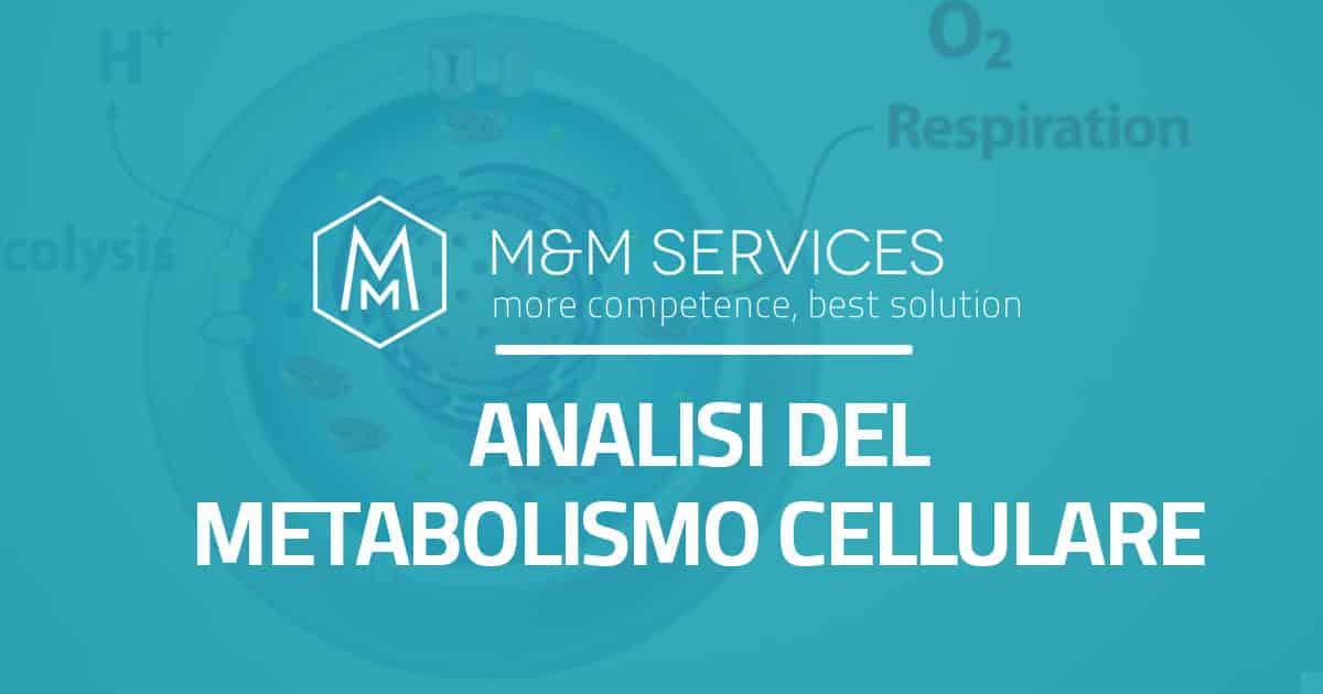Analyse du métabolisme cellulaire