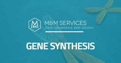 sintesi geni gene synthesis