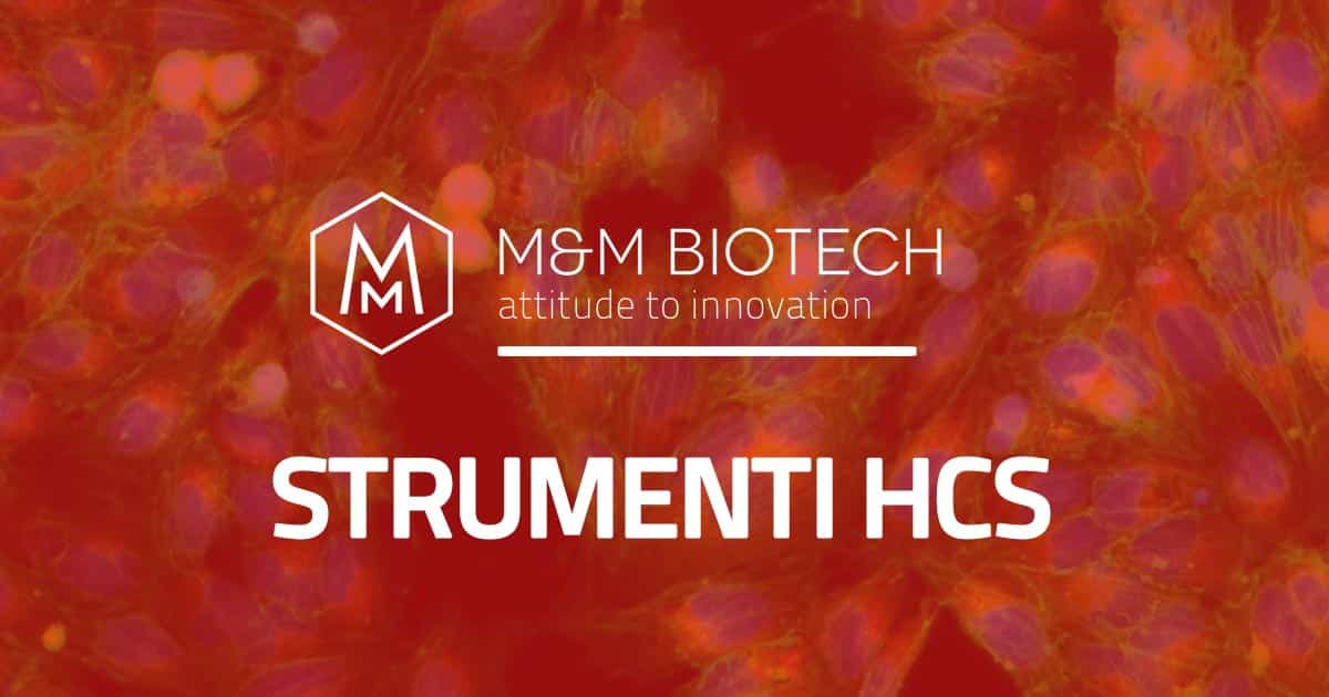 strumenti-hcs-high-contrast-screening