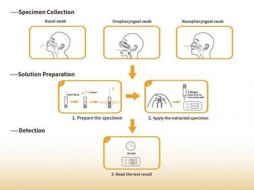 come-effettuare-test-rapido-covid-influenza
