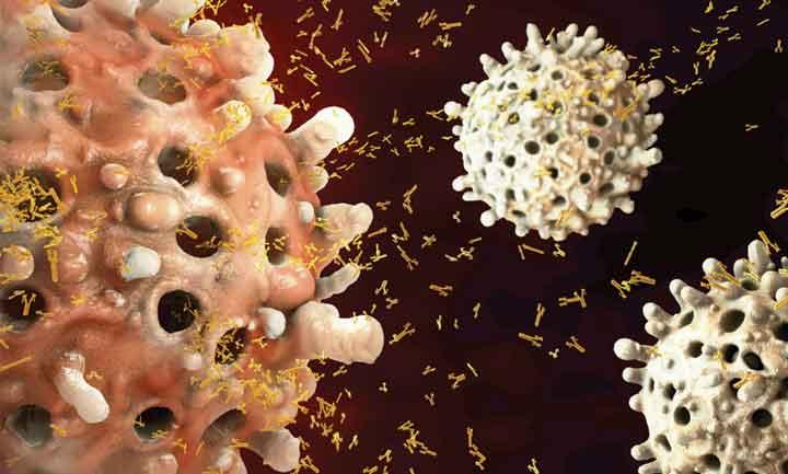 risposta-immunitaria-nasb-kit-elisa